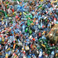Pak officials release plastic scrap on fake certificates